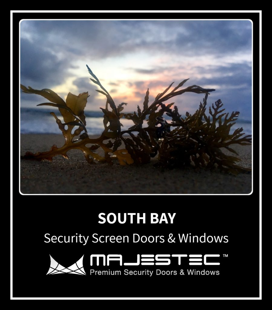 Home Security Screens South Bay