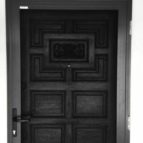Bronze Door_